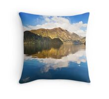Crooked Arm  Throw Pillow