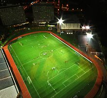 Boston University Nickerson Field by David  Appolonia