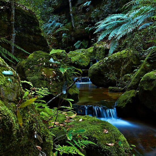 The Brook - Terrace Falls by Mark  Lucey