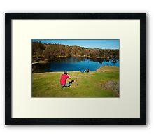 Pesky Photographers! Framed Print