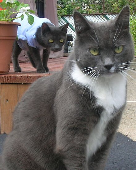 Sneak Attack/ sucker punch by lukasz79