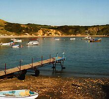 Lulworth Cove, UK by Deb Gibbons