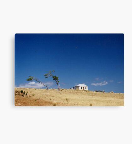 Bleak House, Maria Island, Tasmania, Australia Canvas Print