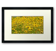 Yellow Nature Framed Print