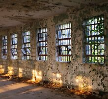 Wall of Windows by WisePhoto