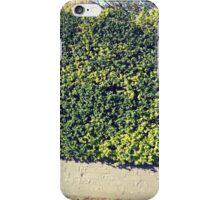 Spring nature iPhone Case/Skin