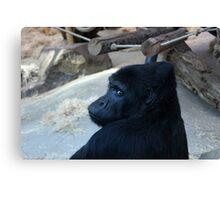sad gorilla Canvas Print