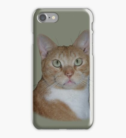 Ginger Puss iPhone Case/Skin