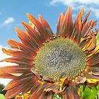 Sunflower Smile on a Sunny Day by leenicola
