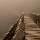 Into the mist by cherryw