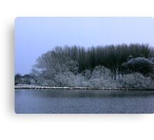 The Pond in Winter Canvas Print