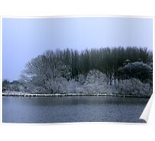 The Pond in Winter Poster