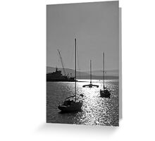 sailboat silhouettes in the sunline Greeting Card