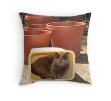 SunShade  Throw Pillow
