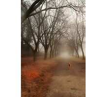 Anya in the Spring Fog Photographic Print