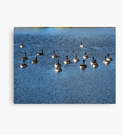 Wild Birds and Pond Canvas Print