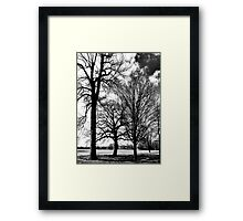 Between Earth And Sky Framed Print