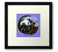Flower bubble Framed Print