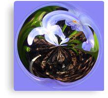 Flower bubble Canvas Print