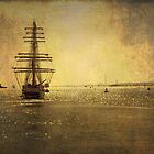 STS Stavros S Niarchos by dmacwill