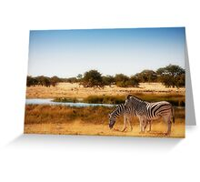 Do zebra dream? Greeting Card