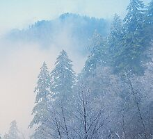WINTER MIST by Chuck Wickham