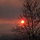 Sunrise lanscape by jimkoul