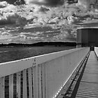 Arlington Reservoir Black and White by oindypoind