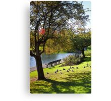 Green, Green and more Green Canvas Print