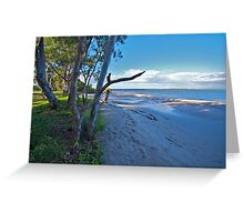 Nature on show, Banksia Beach, Bribie Island Greeting Card