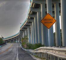 Crocodile crossing by keystime42