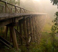 Noogee Trestle Bridge by cherryw