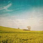 Meadow and Sky by Priska Wettstein