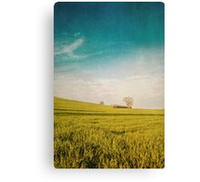 Meadow and Sky Canvas Print