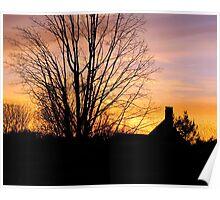 late winter sun Poster