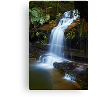 The Ledge - Terrace Falls  Canvas Print