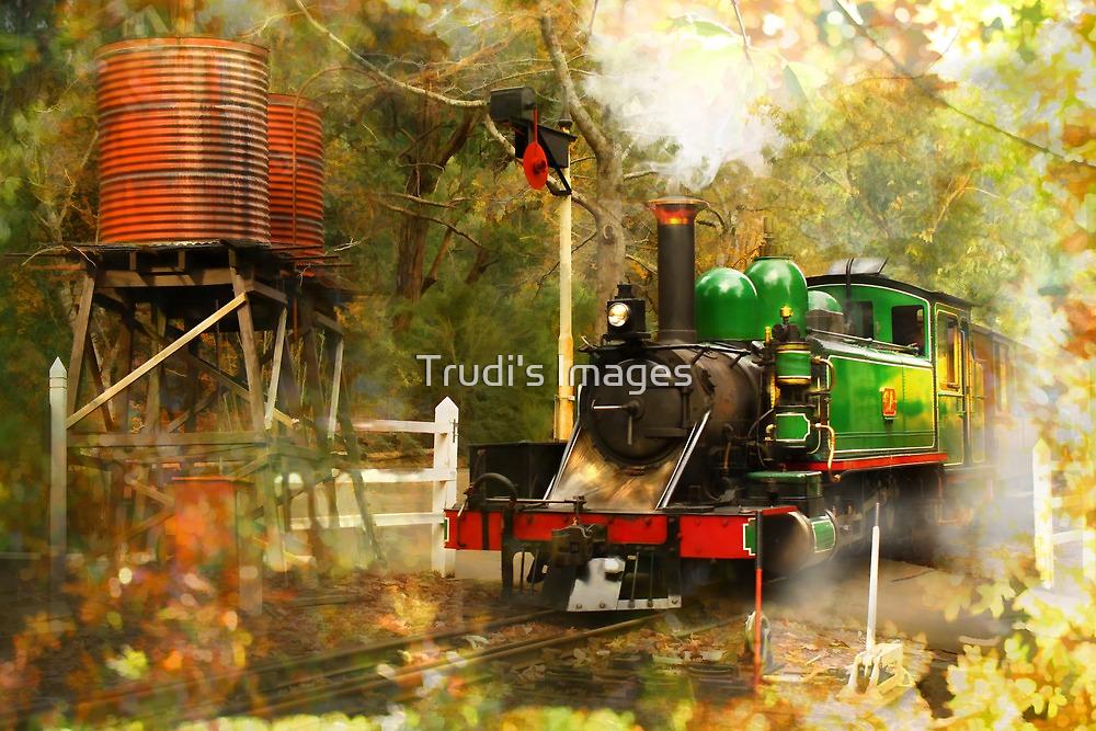 Nostalgic Steam by Trudi's Images