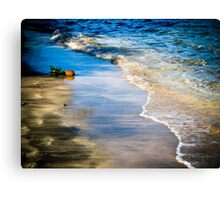 Lonely pineapple washed ashore - Grenada, West Indies Canvas Print