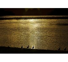 Ducks on the Manning Photographic Print