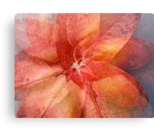 Patterned pinkness Canvas Print
