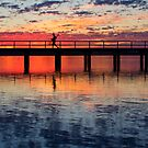 The Crabber - Leschenault Estuary - Western Australia by Chris Paddick