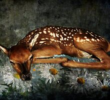 Baby with Daisies by Sharksladie