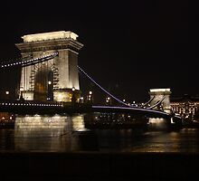 Chain Bridge, Budapest by Timothy Alberry