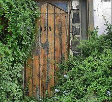 Overgrown at Number 123 Green Street by Larry Lingard-Davis