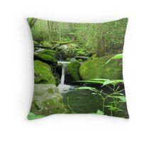 Great Smoky Mountain Waterfall Throw Pillow