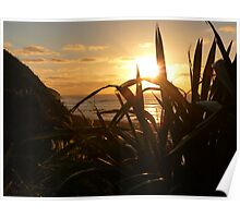 Sunset at Manu Bay, Raglan Poster
