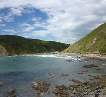 Makara Beach by Matthew Hargreaves