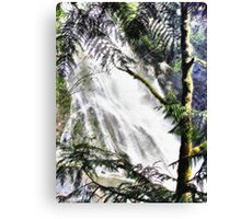 Waterfall in Washington - Sketch Canvas Print