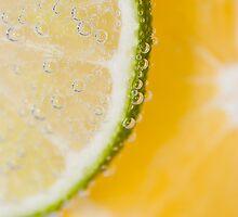 Citrus 2 by pauldwade