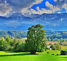 Countryside and Mountains by Daidalos